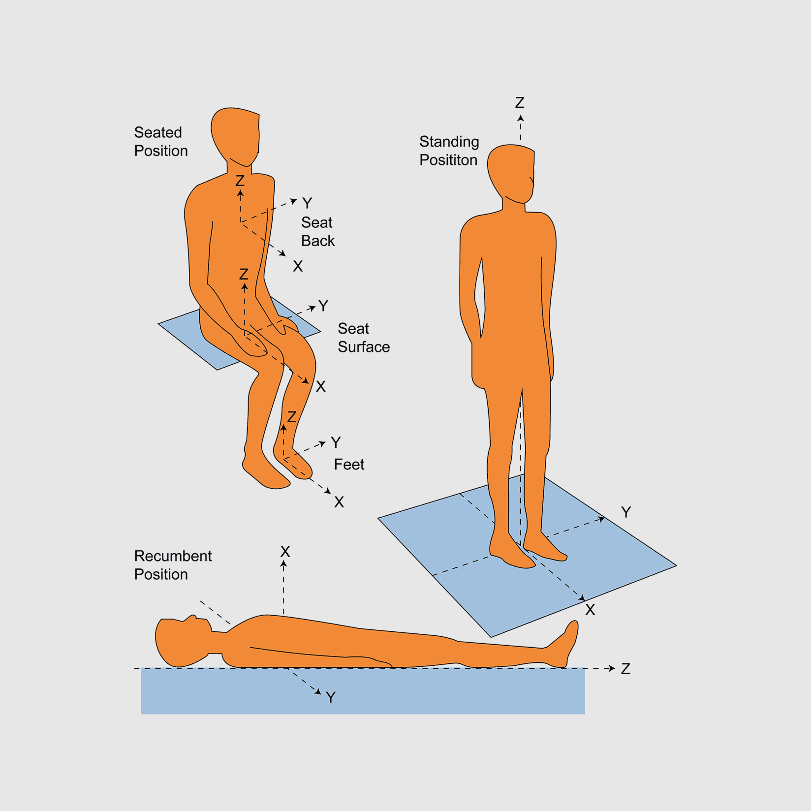 Whole Body Vibration Measurement