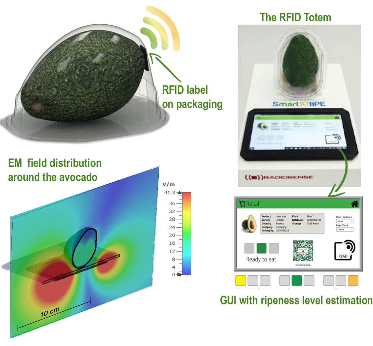 The concept of RFID-totem for fruit ripeness monitoring.